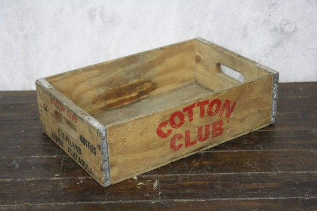 Company cotton club online shop