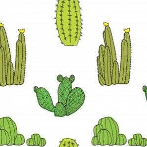 cactusmasterlarge