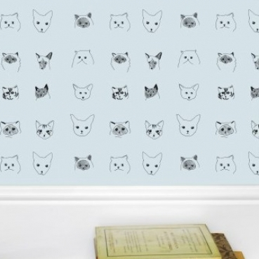 cat situ paper blue