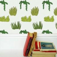 wallpaper situ succulent